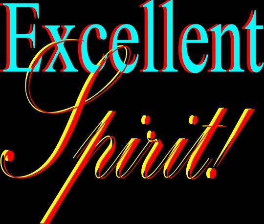 Excellent spirit (2)